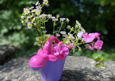 Blumen in einer Gießkanne